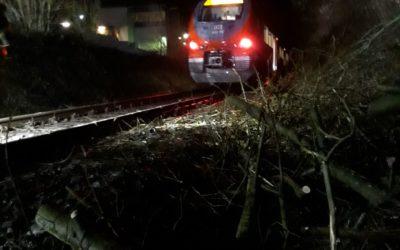 Personenzug kollidiert im Hönnetal mit umgestürzten Baum