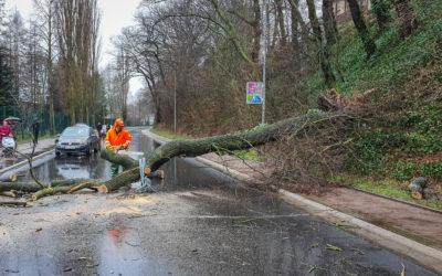 """16 Einsätze durch Sturmtief """"Yulia"""""""